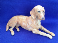 Eve Pearce Hand-Made Model - Hungarian Wirehaired Vizsla * SALE *